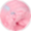 New crop cotton candy.png