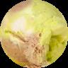 circle-cropped (26)key lime.png