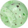 circle-cropped (27) mint choc chip.png