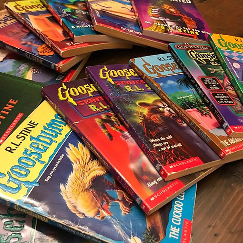 Goosebumps Book Lot, 14 Books, R.L. Stine, Horror Stories