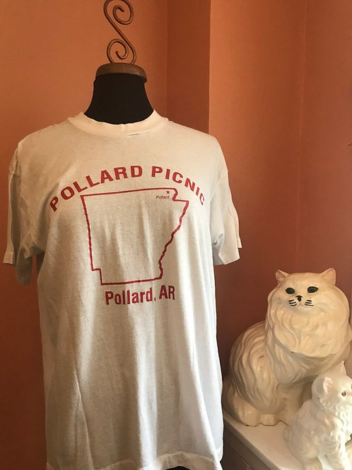 80s Tshirt, Vintage Screen Stars Tshirt, Pollard Picnic, Spring Break, Pollard