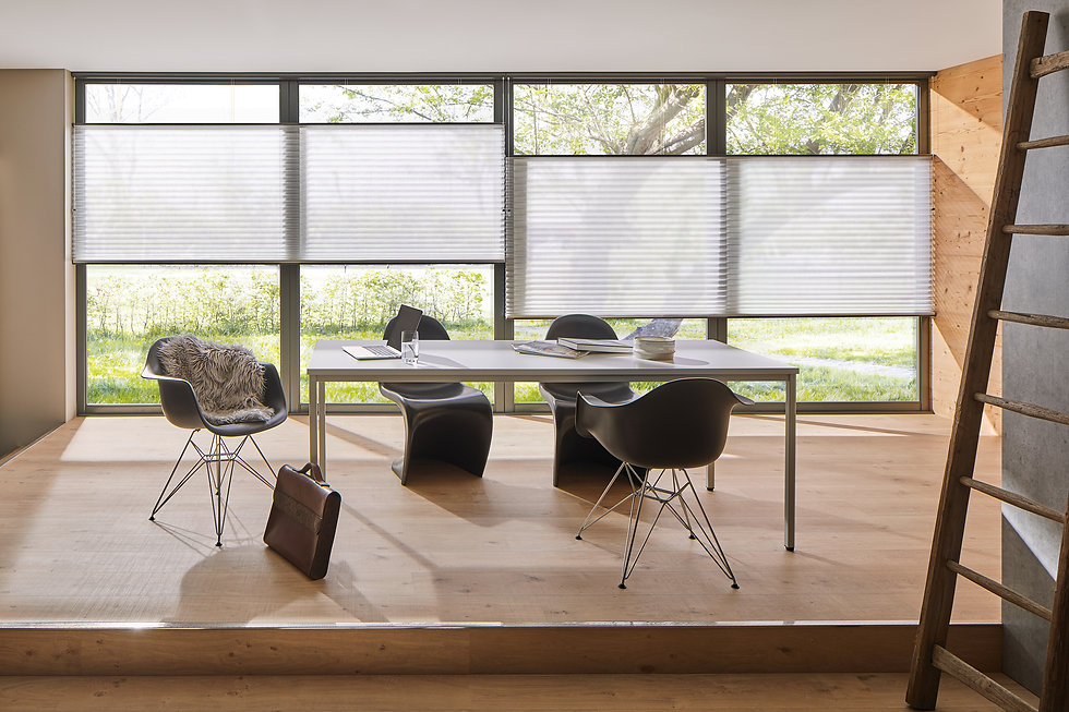 Duette® Shades Full Room Photo white in