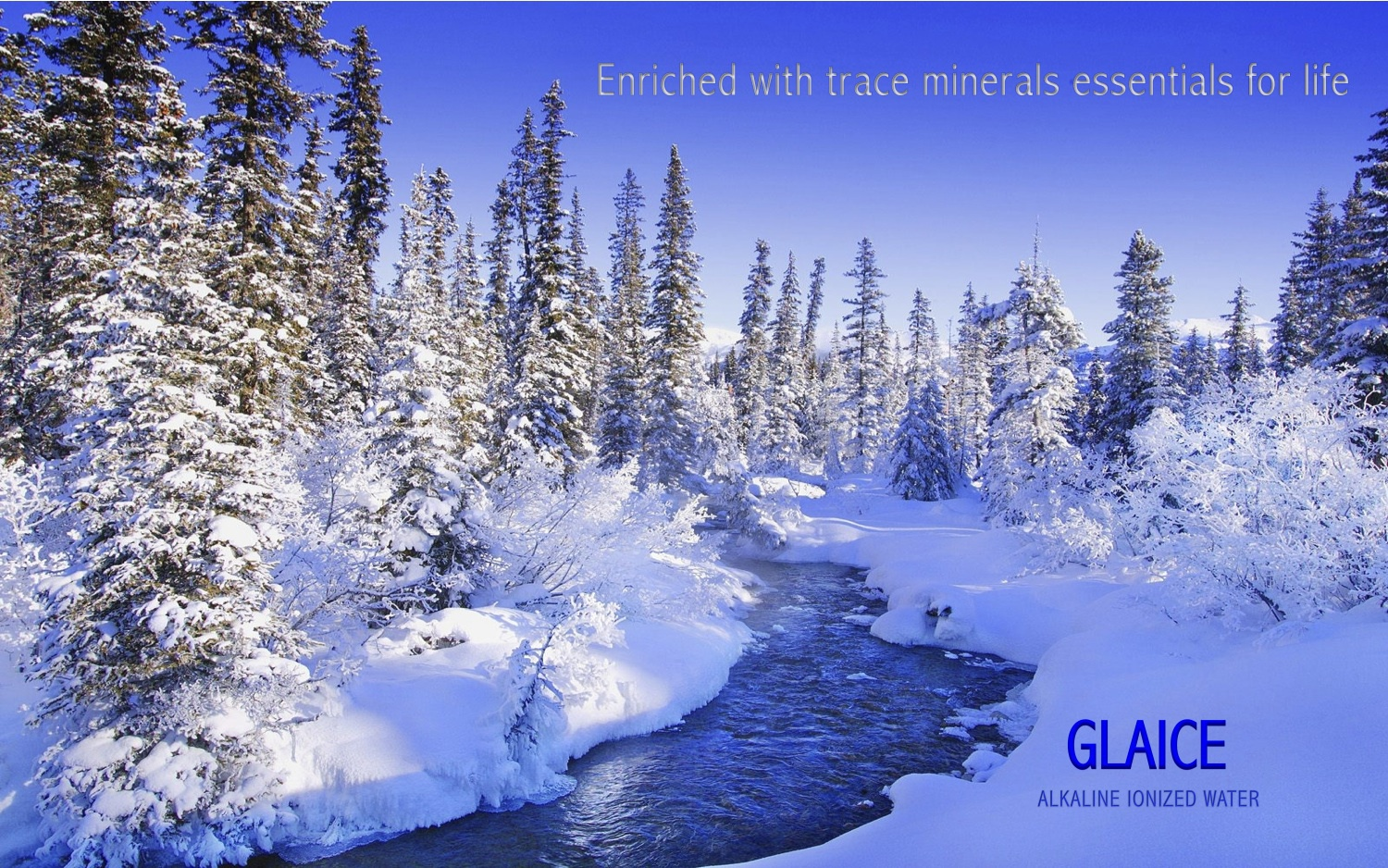 GLAICE+ENRICHED+WITH+TRACE+MINERALS+ESSENTIALS+FOR+LIFE