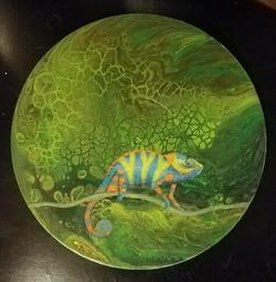 Chameleon Colors-SOLD