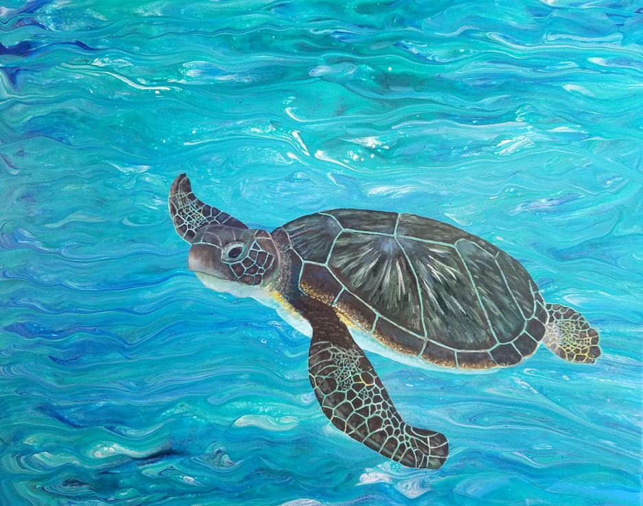 Dreaming of Kauai 2