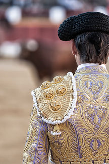 detail-of-the-traje-de-luces-or-bullfigh