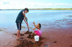 Darnley Basin Beach