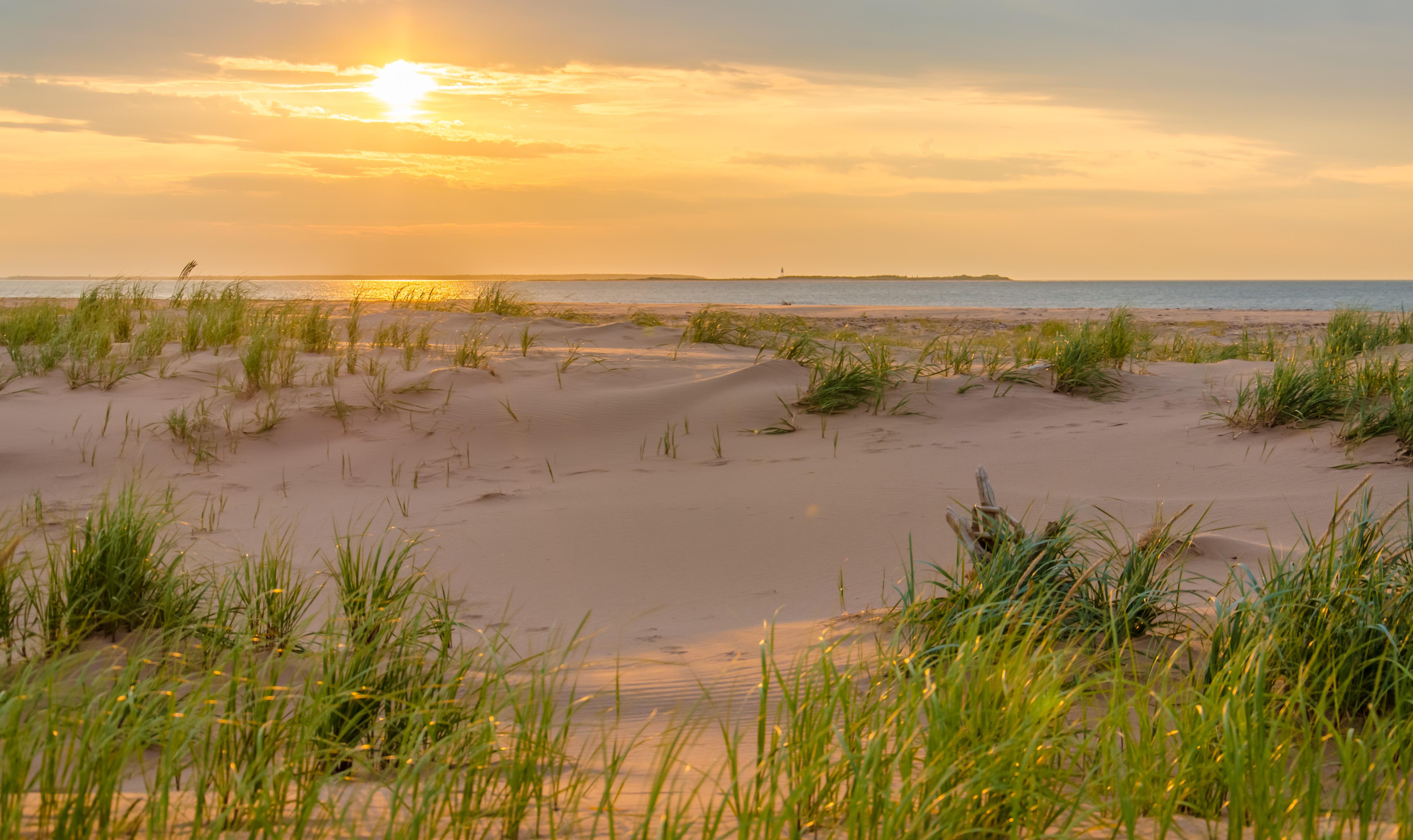 Profitt's Point Beach