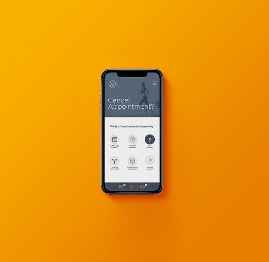 Airrosti Mobile Patient Portal
