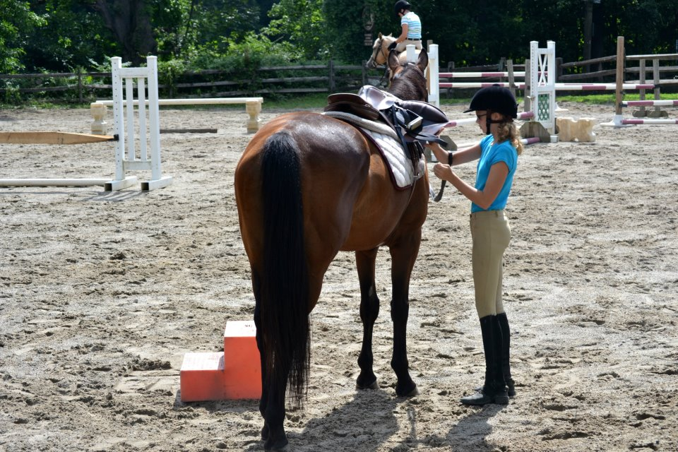 Beech Hill Farm Equestrian Center