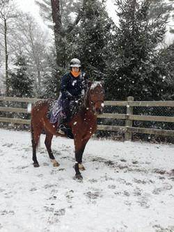 Beech Hill Farm Equestrian Center