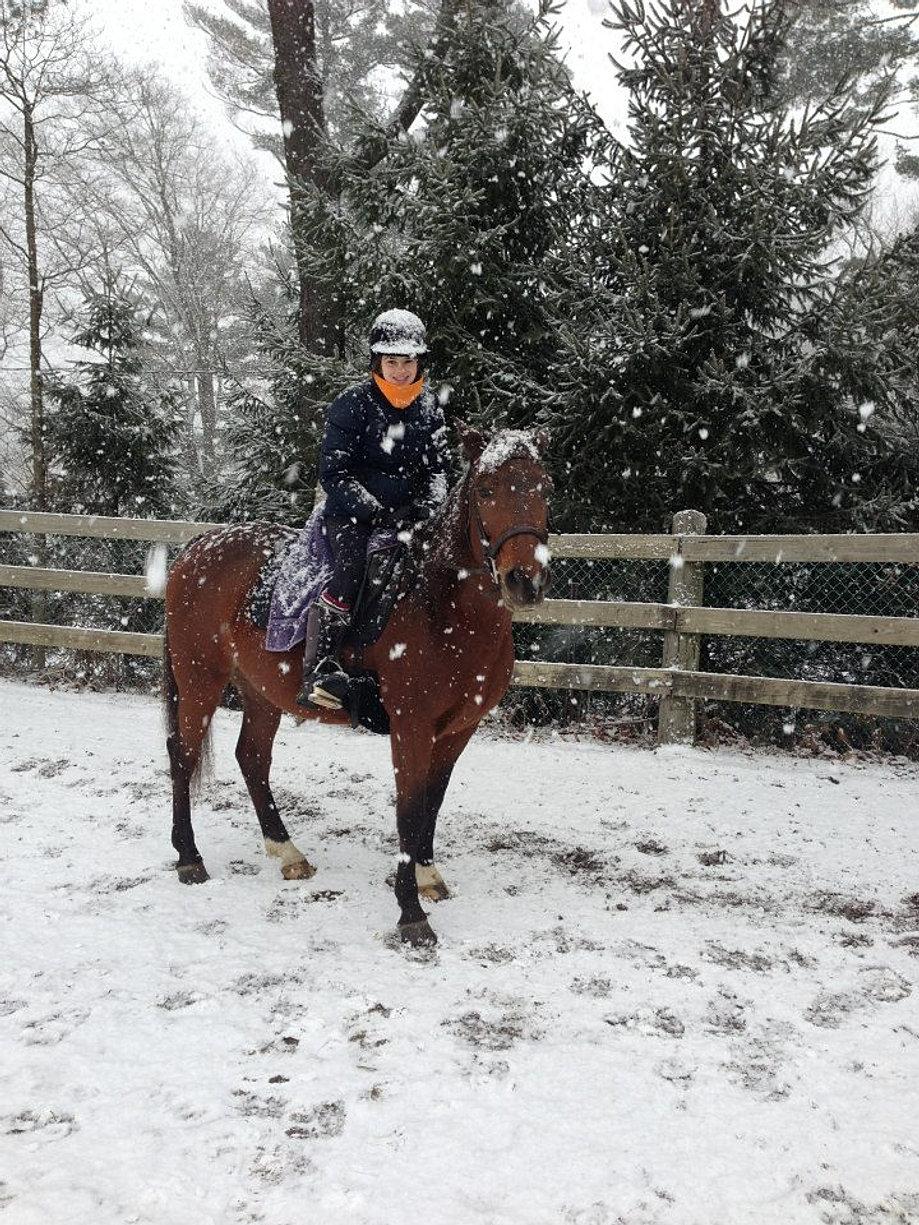 Beech Hill Farm Horseback Riding Pleasantville Ny