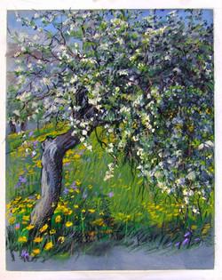 flowering-tree