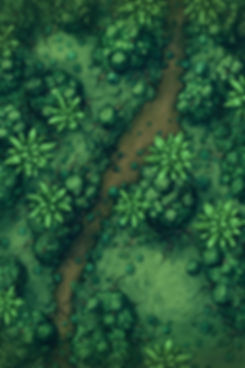 Jungle_path_noGrid_20x30.jpg