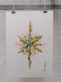 Expansion - AO Artiste - Anne-Sophie Van