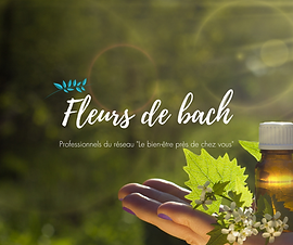 Fleurs de bach - conseillers - France