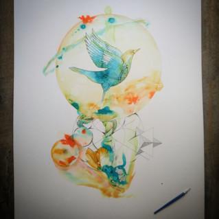 Oiseau Tomtena - Liberté