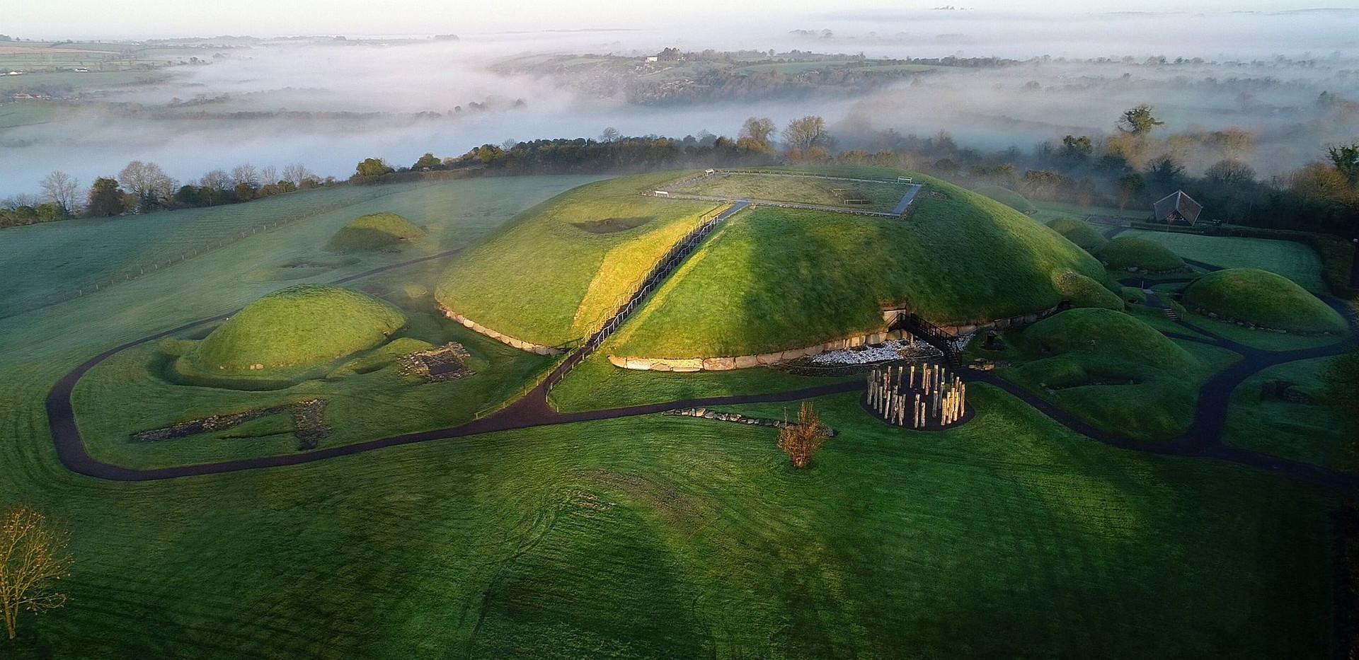 Ireland Wildlife Ancient East 2.jpeg