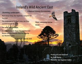 Ireland's Wild Ancient East