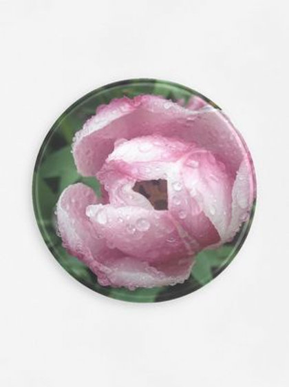 Rose with Dew Round Tray