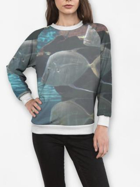 School of Fish Sweatshirt