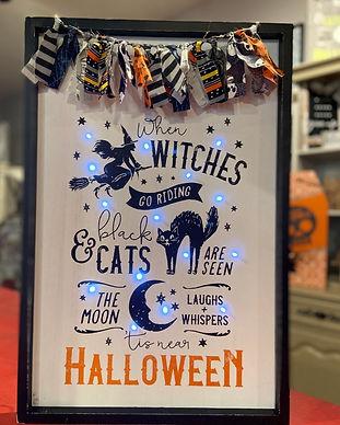 Halloween Light up Signs_edited.jpg