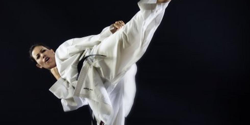 Karate Workout Kumite VI