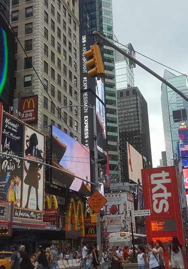 Summer School New York