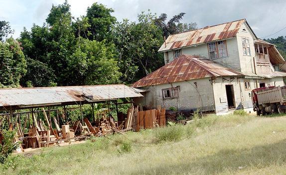 BalaclavaRovingF20051128NG.jpg
