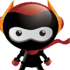 ninja1_edited.png