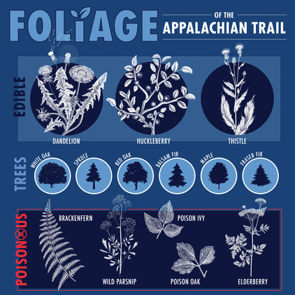 Appalachian Trail Infographic