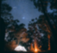 jonathan-forage-367660-unsplash.jpg