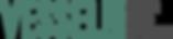 vessrl_iq_logo1.png