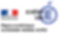 DSDEN logo.png