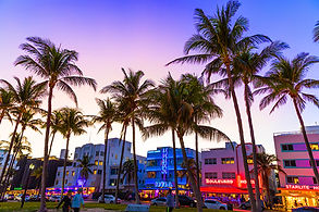 palm trees in front of pastel colored boutique hotels in miami at sunset. consilium events.