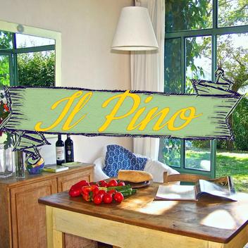 Pino Site.mp4