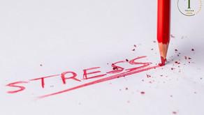 อันตราย 12 ประการ หากมีความเครียดสะสม (Stress) เป็นระยะเวลานาน