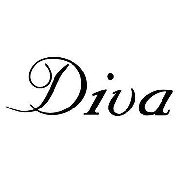 DIVA 500-01.jpg