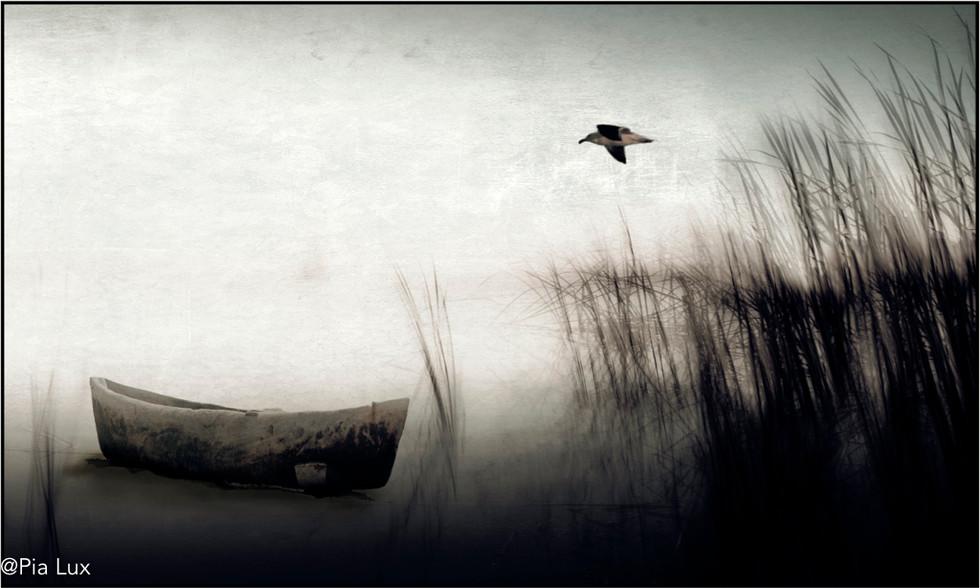 And so we seek solitude