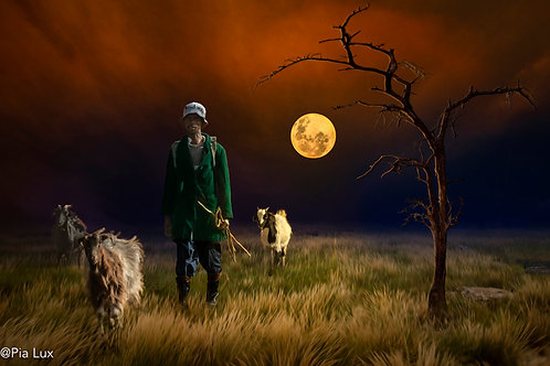 Goatherd in the light
