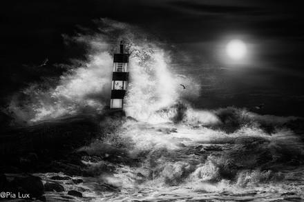 The nightwatch-mono noir