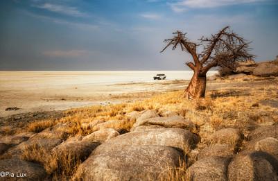 Travelling Kubu Island Botswana