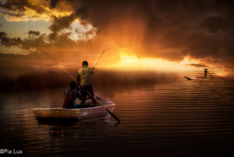 Fishing in the light