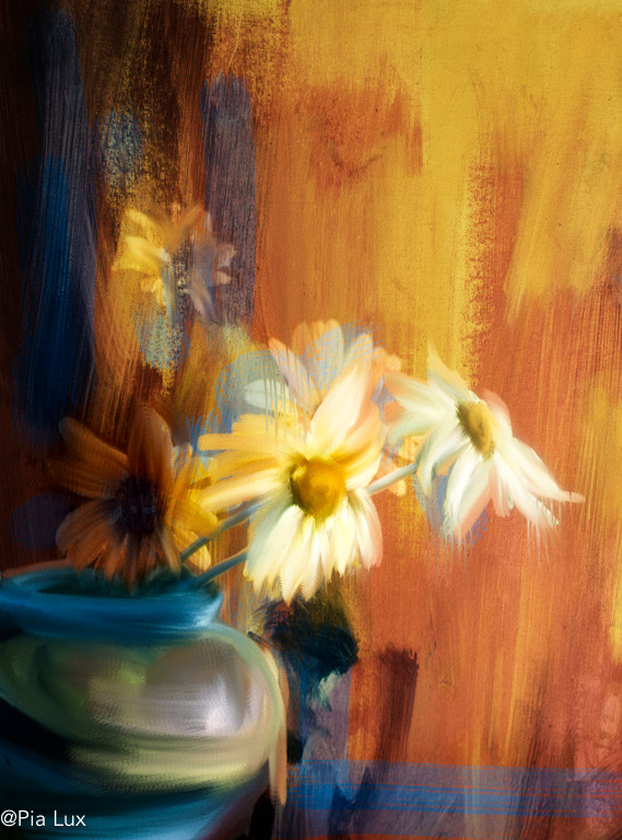 Daisies in blue pot