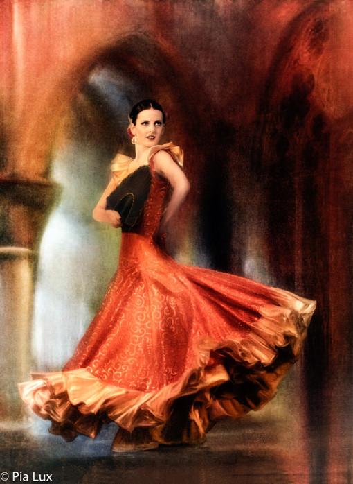 Passion of the spanish dance2.jpg