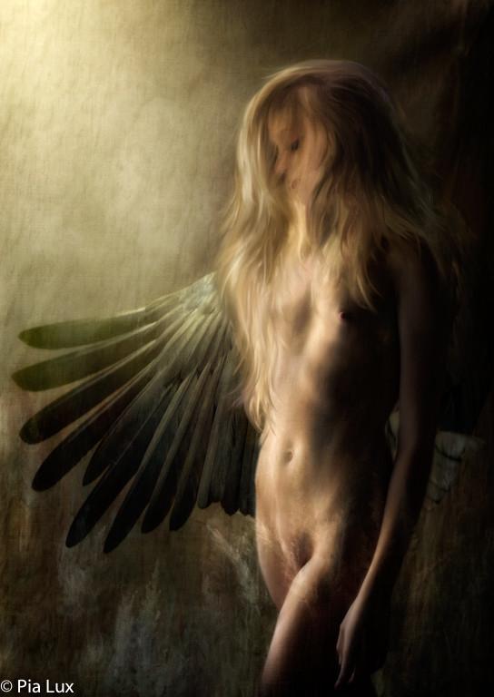 Unleash your wings, unleash your soul.jp