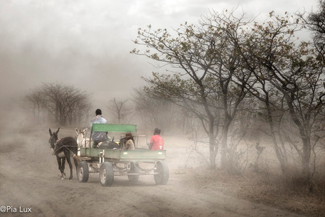Travelling in the dust
