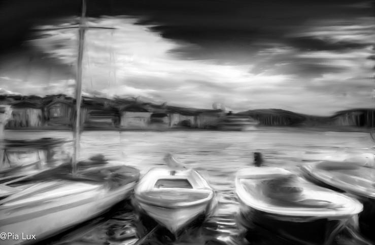 The harbour mono