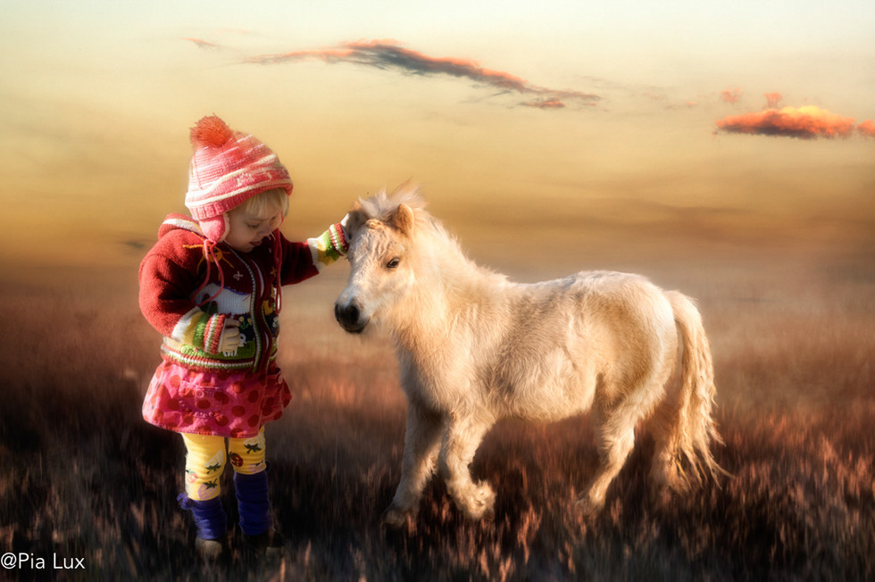 My pony and I