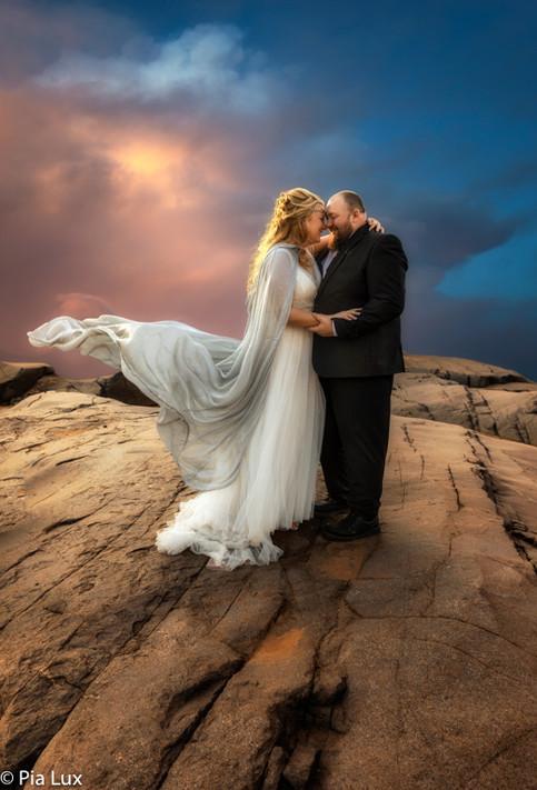 Wedding composite.jpg